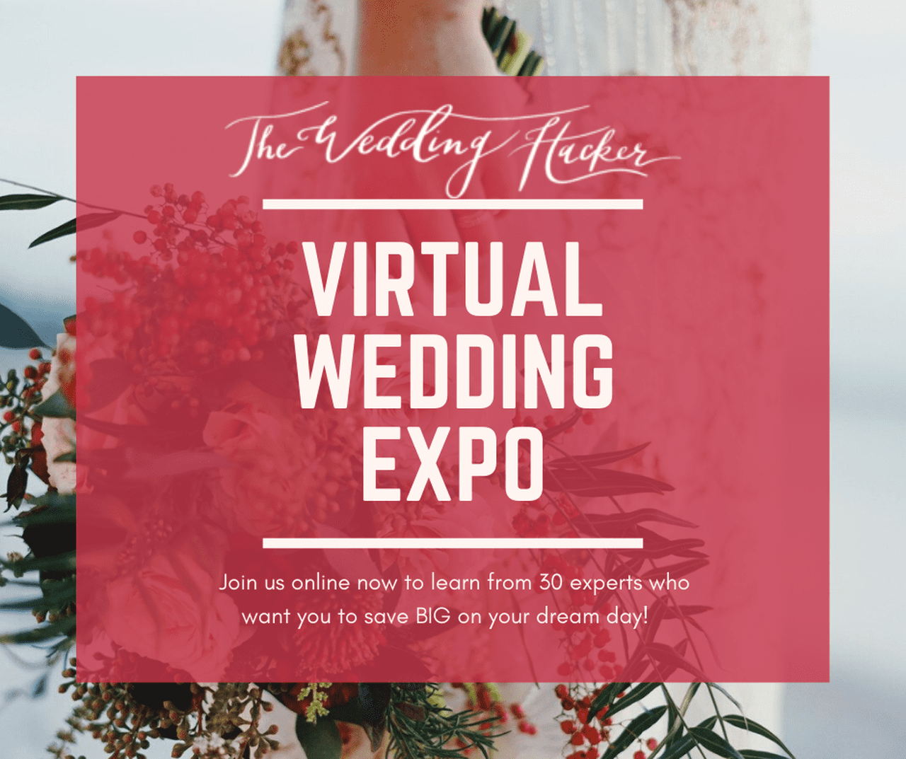 Wedding Hacker Expo - VIP Pass