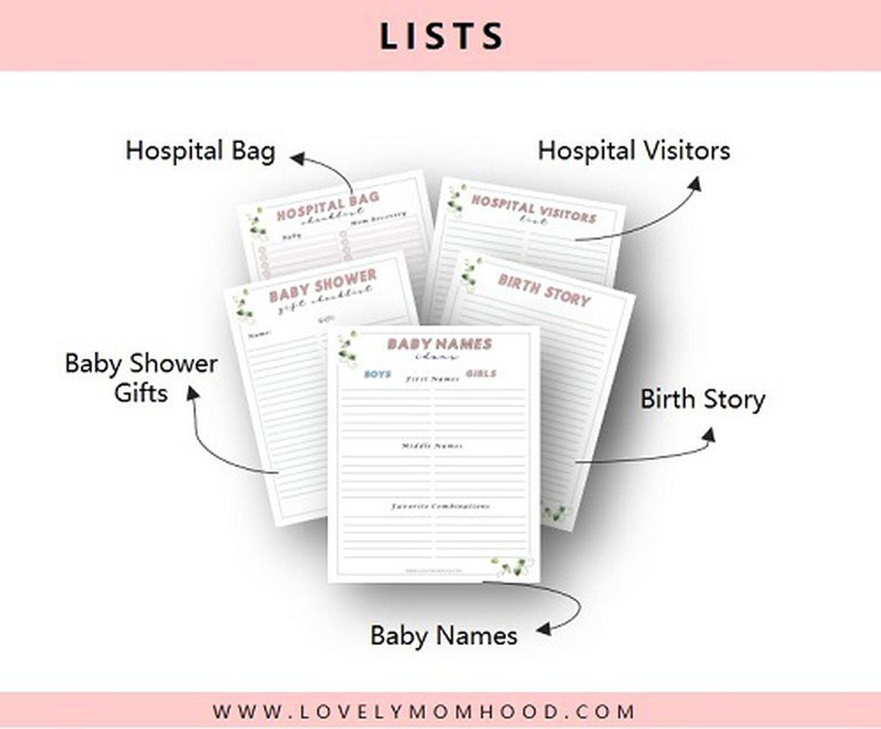 Pregnancy Planner (Printable Bundle)